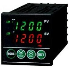 Temperature Controller: REX-P24